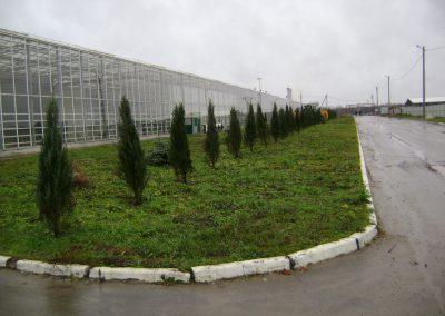 Stupinо Greenhouse Сomplex